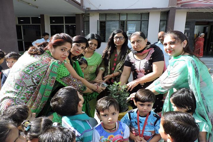 Dav Centenary Public School Sirsa-Plantations