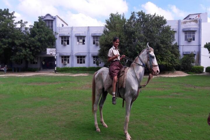 Dav Public School-Horse Riding