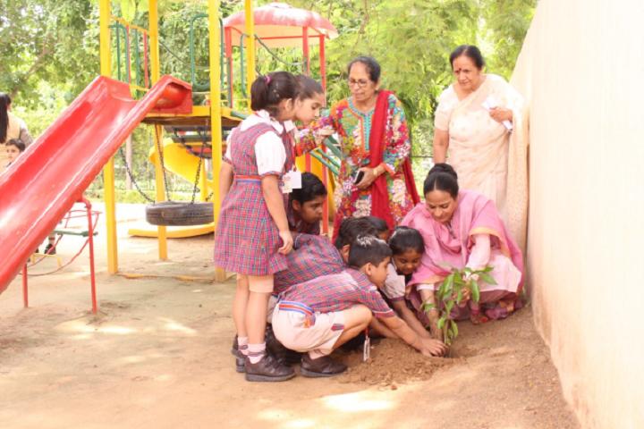 DAV Public School-Planting