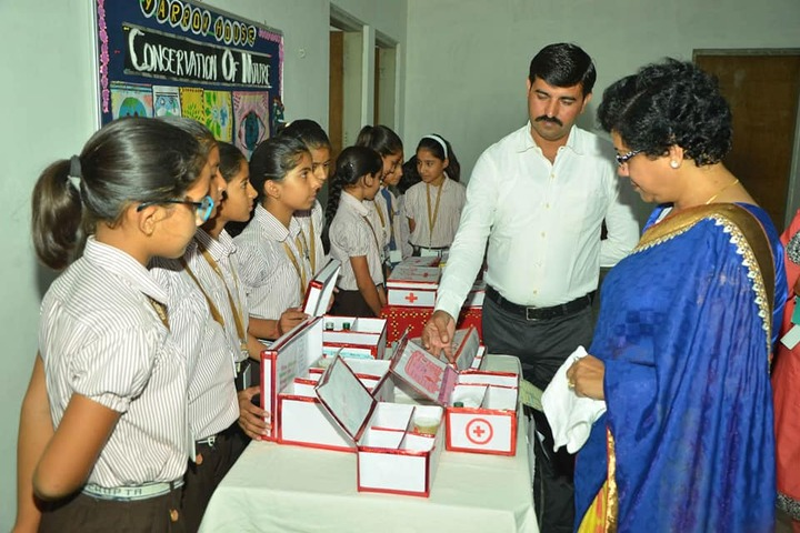 Dayanand Senior Secondary School-Exhibition