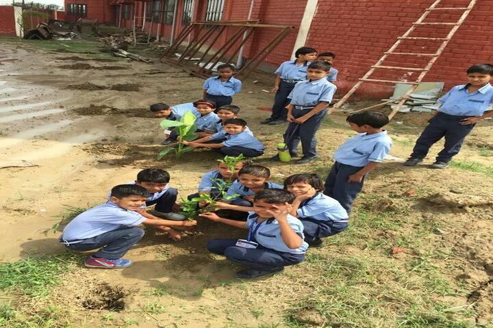 Delhi Heritage International School- Tree Plantation