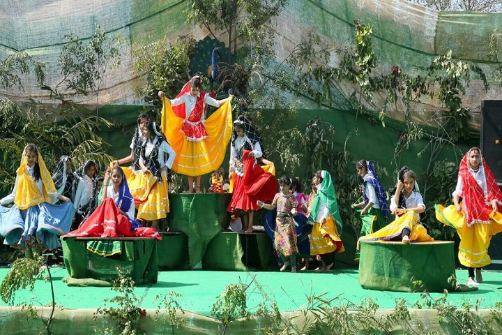 Delhi International Public School-Events