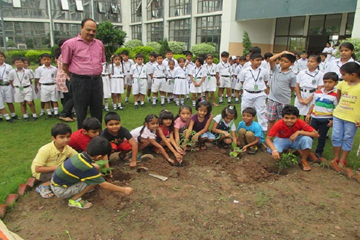 Delhi Public School Ambala-Plantation