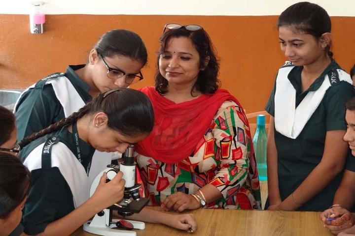 Dev Samaj Vidya Niketan-Physics Lab