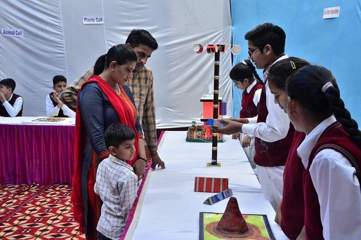 Dhruv Public School-Activities