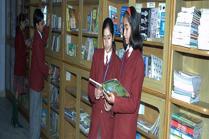 Dig Vijay Memorial School-Library
