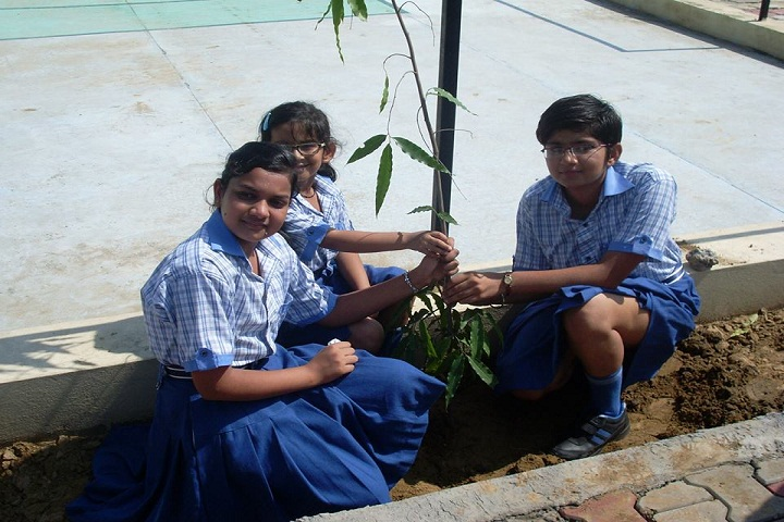 Doon Public School-Tree Plantation
