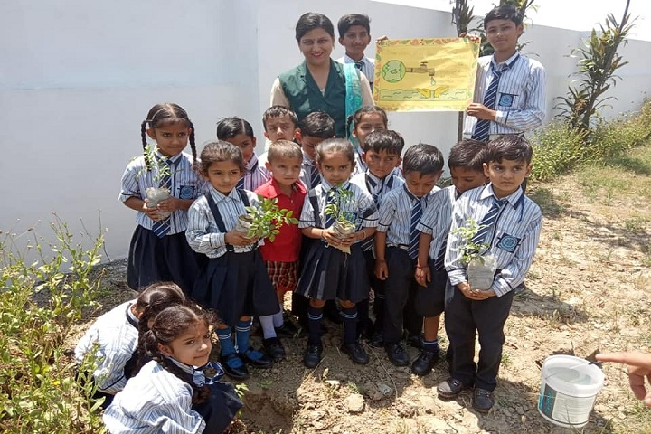 Doon Public School-Plantation