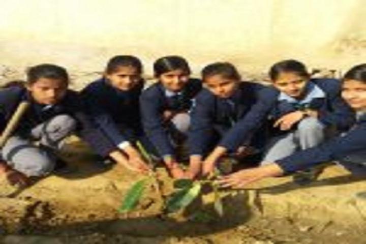 G B Public Senior Secondary School-Earth Day Activity
