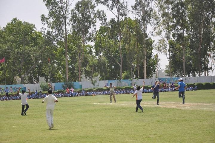 Golden Harrier School-Sports cricket