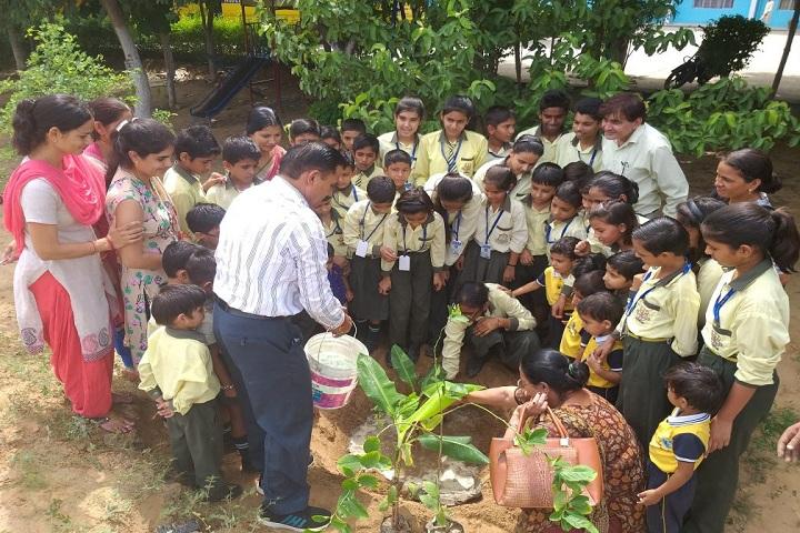 Grv Model School-Others plantation