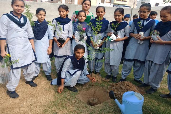 Guru Teg Bahadur Khalsa Public School-Plantation