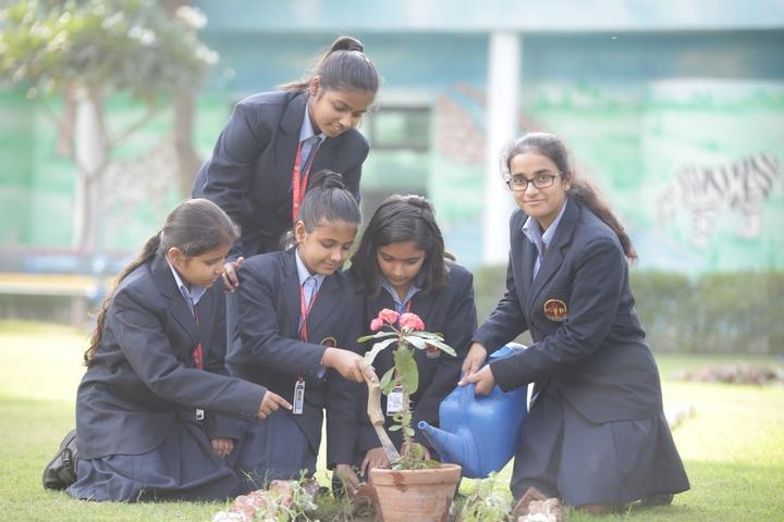 Gurukulam The School-Plantation