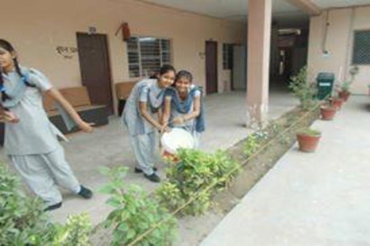 H M Senior Secondary School-Plantation