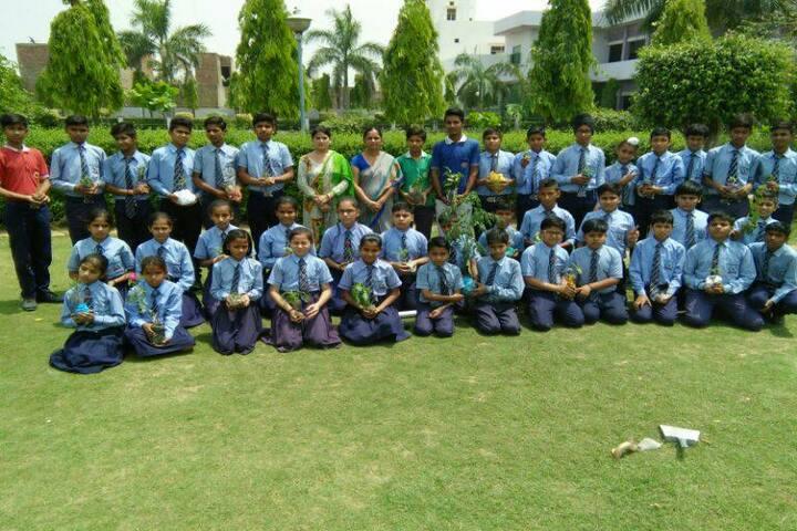 Haryana Senior Secondary School-Tree Plantation
