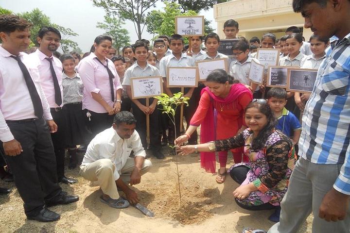 Indus Public School-Plantation