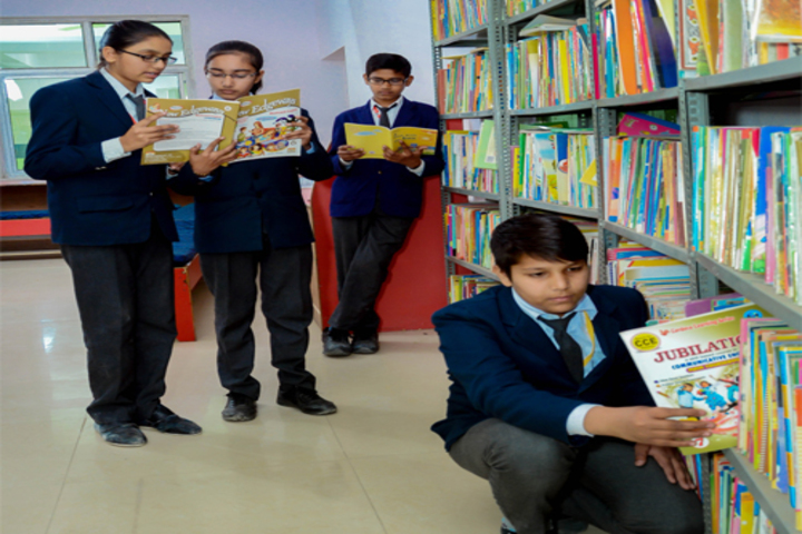 Indus Valley Public School-Library