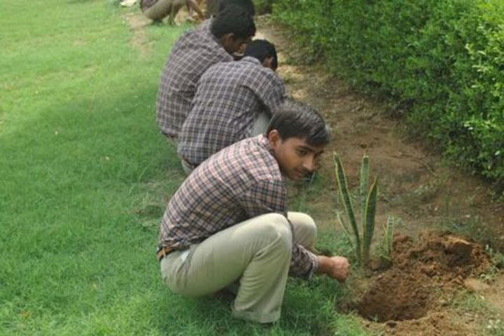 J J School Of Education-Tree Plantation