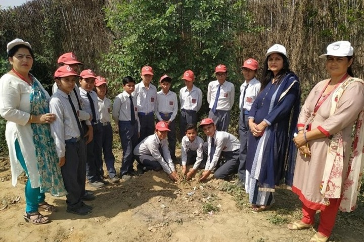 Kalpana Chawla Vidyapeeth-Plantation