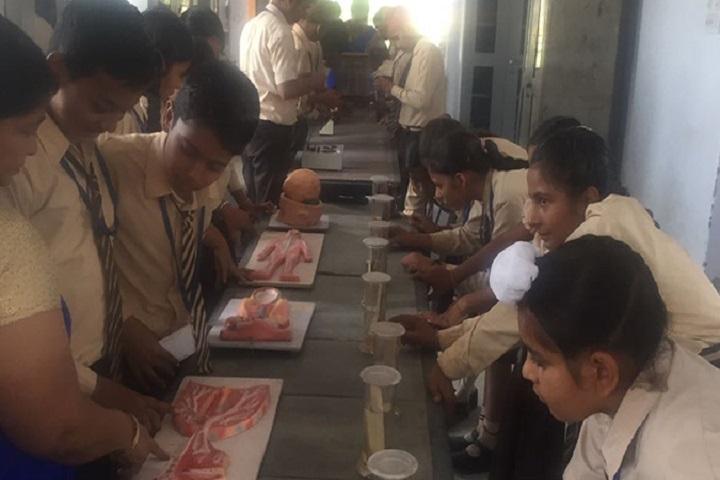 Kamala Montessori School-Bio Labs