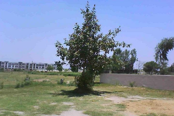 Kendriya Vidyalaya-Campus Outside View