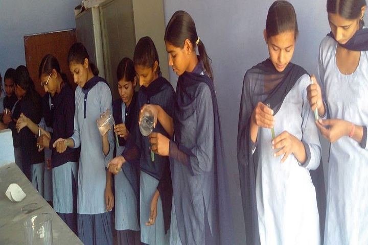 Krishna Public High School-ChemistryLab