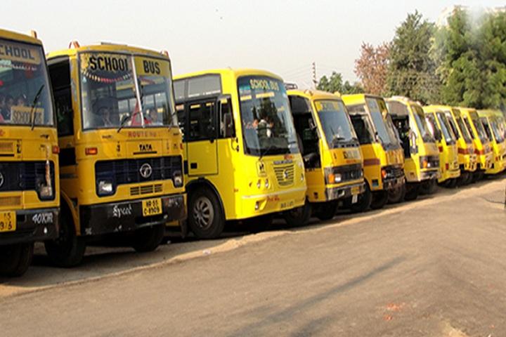 Lion Public School-Transport
