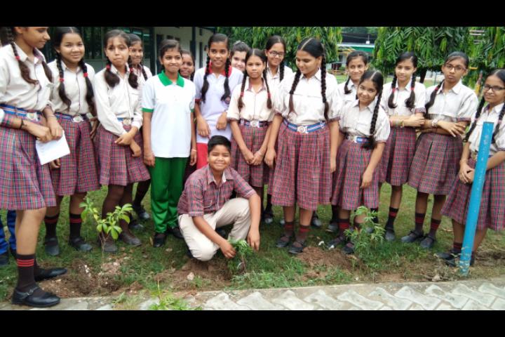 Major R.N Kapoor Dav Public Senior Secondary School- Tree Plantation
