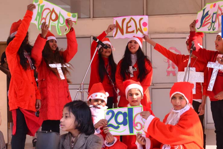 Manish Papneja Memorial Public School-Christmas And New Year Celebration