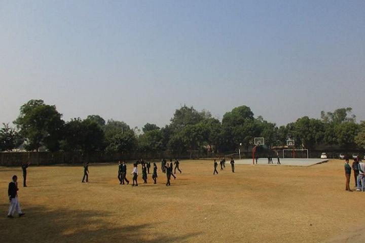 Mewat Model School-Sports volley ball