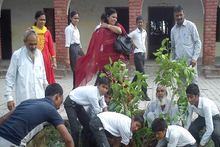 Mewat Model School-Tree Plantation