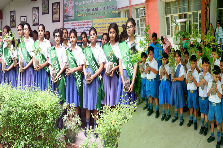 Model School Huda-Tree Plantation