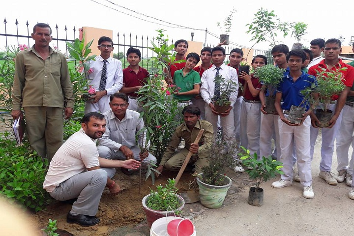 Mother India Senior Secondary School-Activity