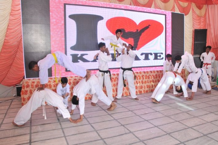 N C C Senior Secondary Model School-Karate