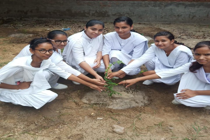 Nachiketan Model Senior Secondary School-World Environment Day