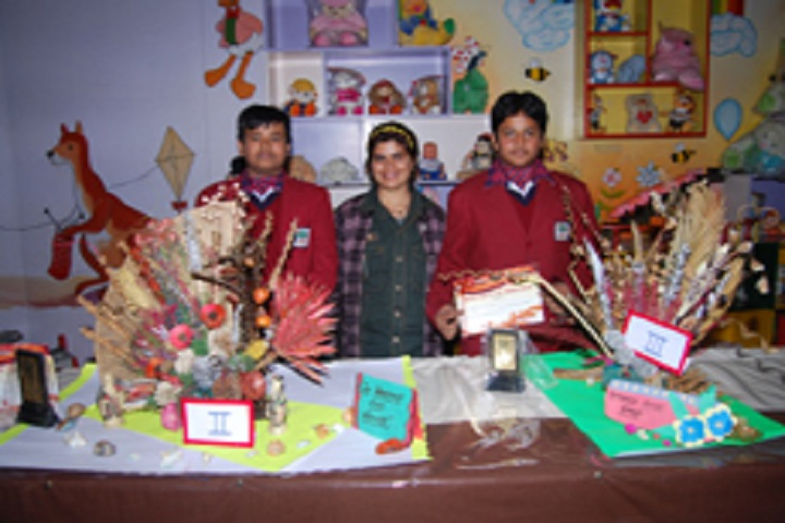 P K R Jain Public School-Science Exhibition