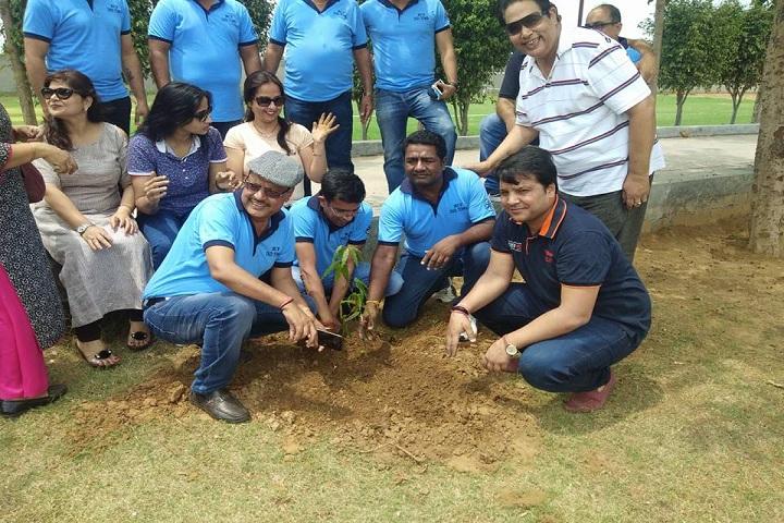 Pinewood International Boarding School-Tree Plantation