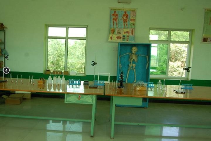 Rajwanshi Senior Secondary School-Biology Lab