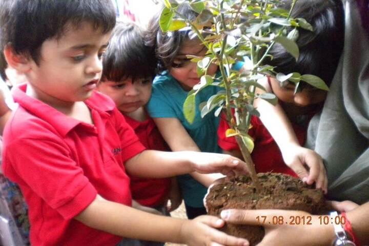 Ryan International School-Tree Plantation