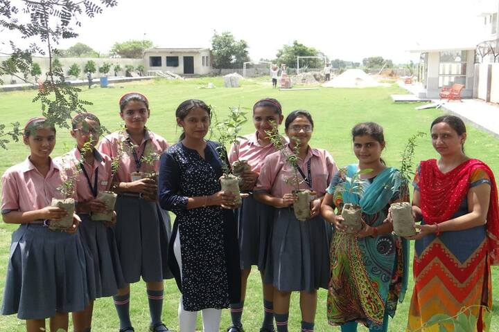 SDM Public School-Tree Plantation