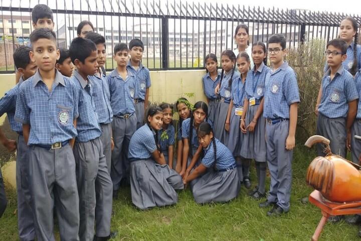 S A Jain Vijay Vallabh Public School-Tree Plantation