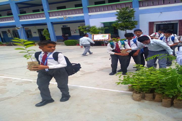 S B S Jovial Child Senior Secondary School-Environment Day