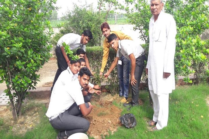 S D Public School-Tree Palntation