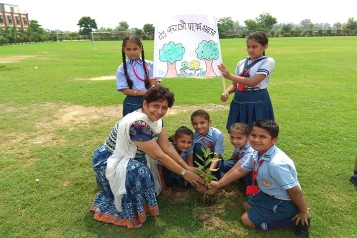 S S International School-Plantation