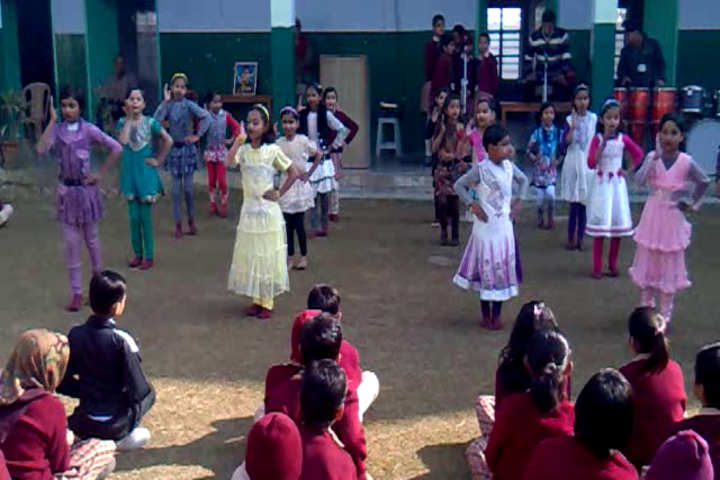 Sanadan Vidya Niketan Public School-Dancing Activity