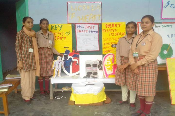 Sanadan Vidya Niketan Public School-Science Exhibition
