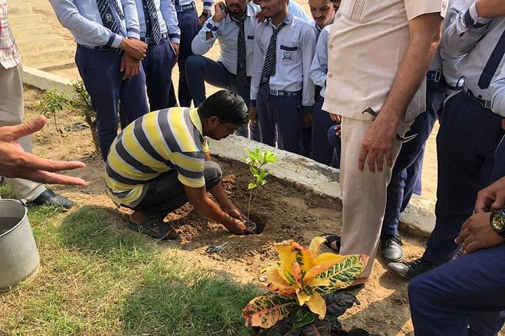 Sanskar Senior Secondary School-Plant A Tree Programme