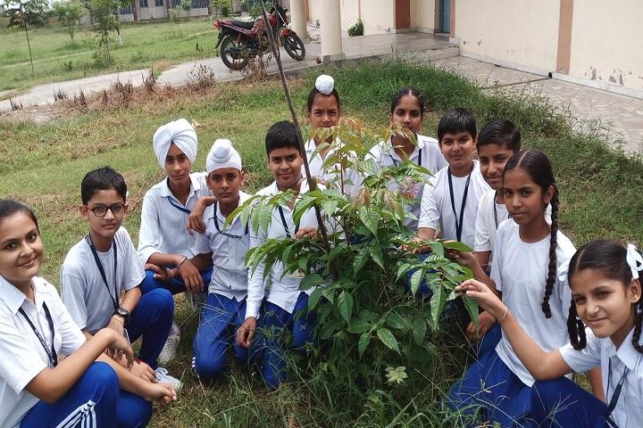 Sant Ishar Singh Academy-Others plantation