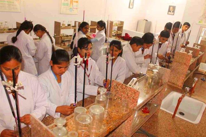 Sant Nischal Singh Public School-Chemistry Lab