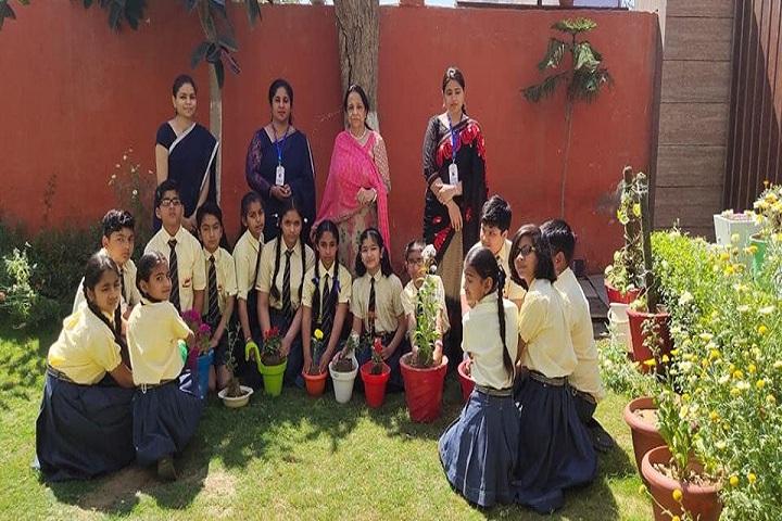 Sawan Public School-Plantation